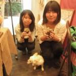 多肉植物を使ったワークショップ(手作り体験) -名古屋 観光 デート-
