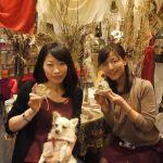 名古屋の料理教室まとめてみました 【@体験】