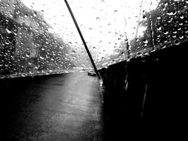 雨の中貝殻体験