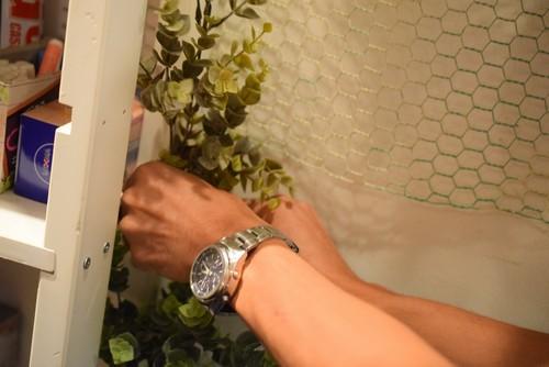 植物 植え込み