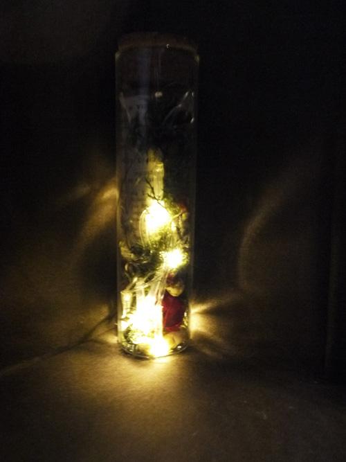 ドライフラワー 暗闇 光る クリスマス