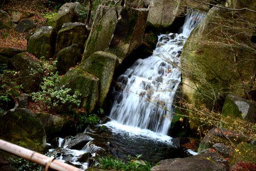 滝 フォトジェニック