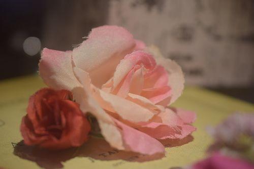 ピンク フラワー
